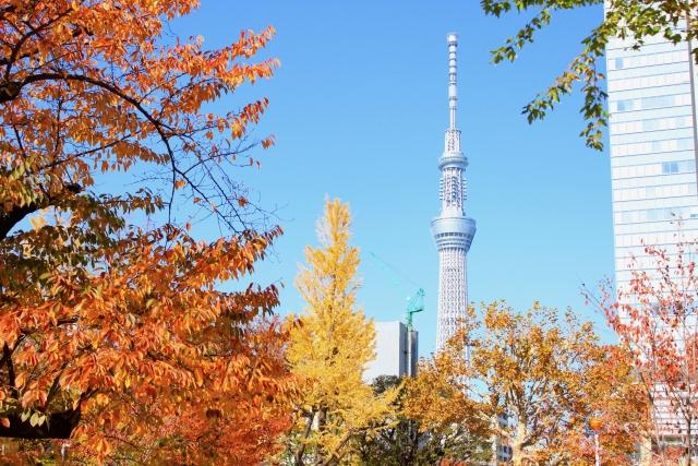 錦糸町の風景画像