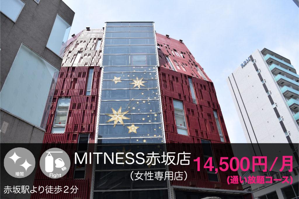 ミットネス赤坂の外観